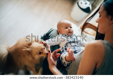 mother playing with her baby and dog - stock photo