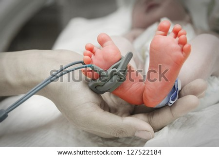 mother's hand holding feet of new born baby sick in incubator chamber in hospital - stock photo