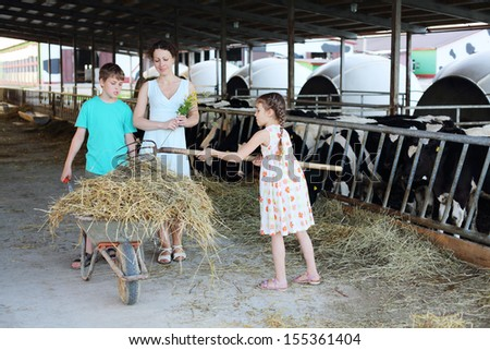 Mother with flowers looks at her working son and daughter at cow farm. - stock photo