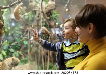 Mother with her son looking at wild animals in the museum - stock photo