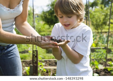 Mother with son exploring soil in community garden - stock photo