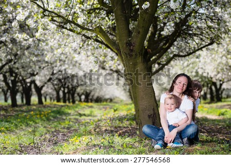 Mother with two sons in in cherry blossom spring garden - stock photo