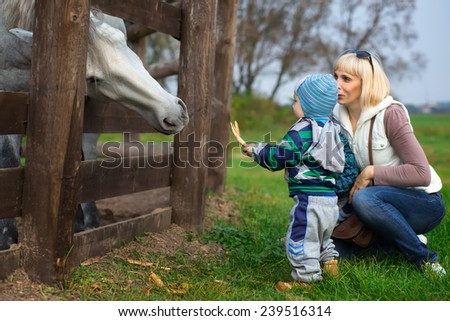 Mother with two-year child feed horse from hands - stock photo