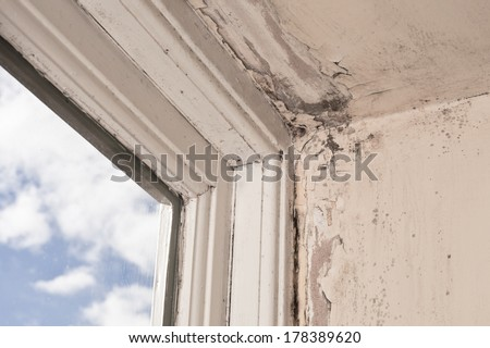 Mould and wood rot on a window frame and wall - stock photo