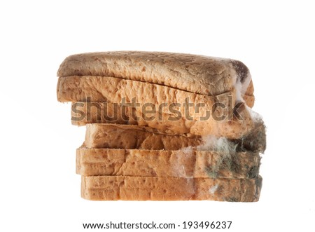 Mouldy bread isolated on white background.