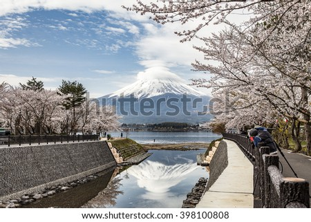Mount Fuji, lenticular cloud and cherry blossom, Japan.  - stock photo
