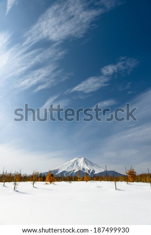 Mount Fuji with Beautiful Sky , after the heavy snow storms in the past 120 years in 19 February 2014 - stock photo