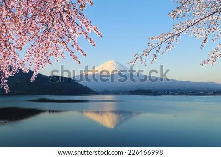 Mount Fuji with Cherry Blossom, view from Lake Kawaguchiko, Japan - stock photo