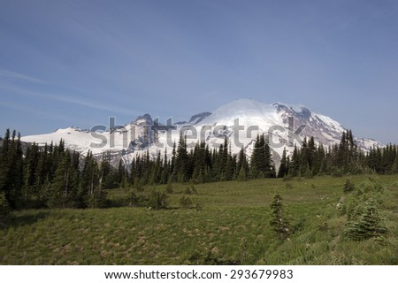 Mount Rainier behind alpine field