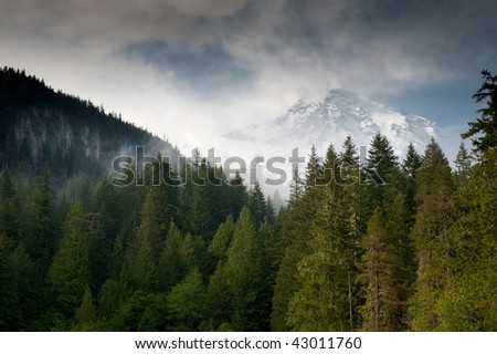 Mount Rainier behind trees and clouds