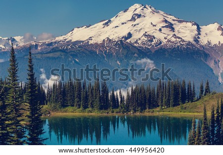 Mount Rainier national park, Washington - stock photo
