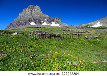 Mount Reynolds Logan Pass Horizontal green meadow - stock photo