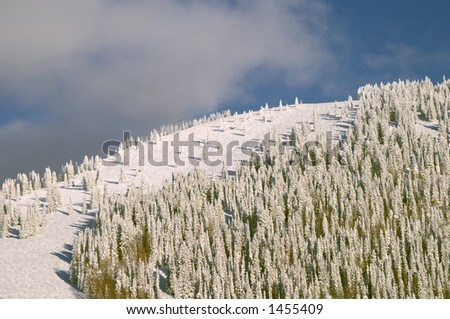 Mountain at winter, Steamboat ski resort, Colorado, United States - stock photo