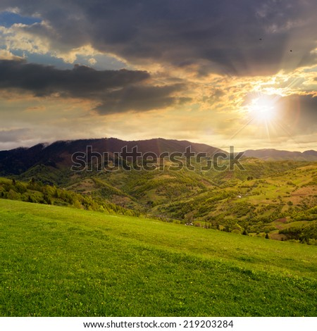 mountain autumn landscape. pine trees near meadow and forest on hillside under  sky with clouds at sunset