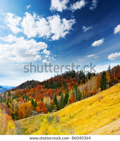 Mountain autumn landscape with colorful forest. Blue sky. - stock photo