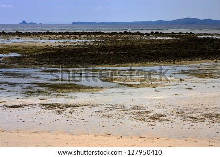 ocean isle beach hindu single men Happy hours - 9br luxury home at ocean isle beach 9br luxury home at ocean isle beach 1 single bed, 1 bunk bed.