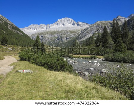 Mountain beautiful vacation on Italian Alps. Adventure in the pure air, rivers, blue sky and giant trees. Big emotion for healty  relaxing tourism in the wilderness.