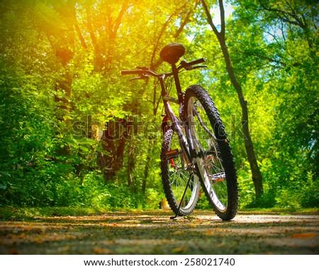 Mountain bike on rocky trail - stock photo