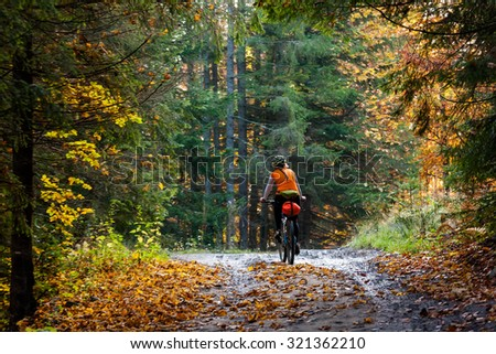 Mountain biker in autumn forest - stock photo