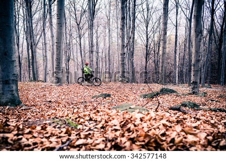 Mountain biker on cycle trail in woods. Mountains in winter or autumn landscape forest. Man cycling MTB on rural country road. Sport fitness motivation and inspiration. - stock photo