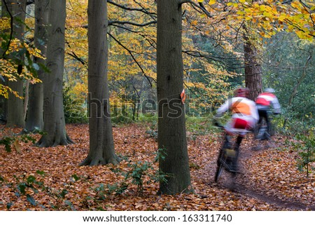 Mountain bikers, cyclist, speeding in beautifully colored autumn wood, unrecognizable by motion blur in the woods surrounding Breda, The Netherlands - stock photo