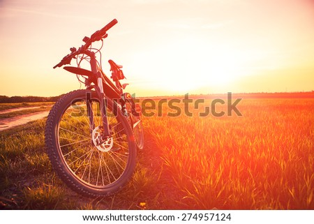 Mountain biking down hill descending fast on bicycle. View from bikers eyes. - stock photo
