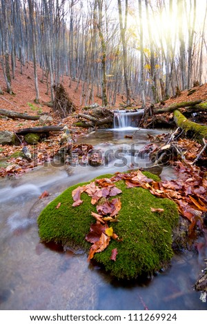 Mountain brook in autumn forest - stock photo