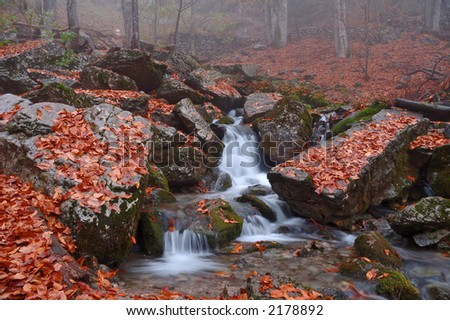 Mountain brook in autumn forest in Crimea