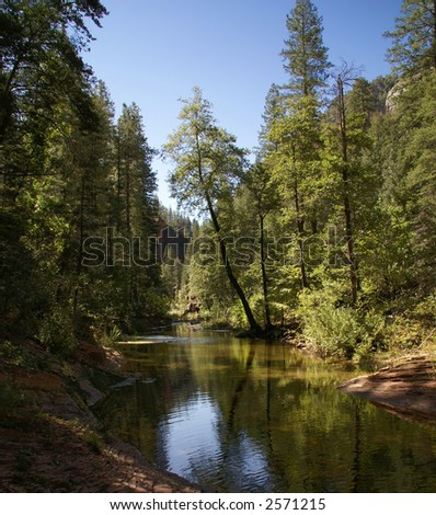 Mountain Canyon Stream - stock photo
