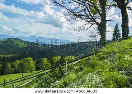Mountain Chain Carpathians Ukraine Mountain Forest Stock Photo