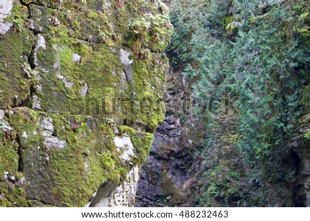 Mountain cliff with green moss.