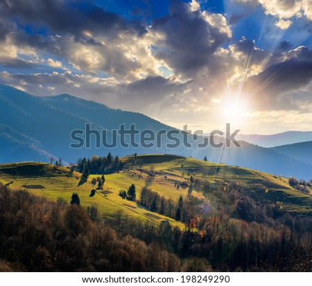 mountain fall landscape. pine trees near meadow and forest on hillside under  sky with clouds at sunset