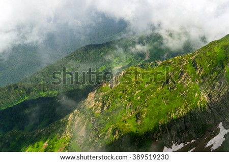Mountain forest. Beautiful mountain forest landscape. Mountain forest before storm. Amazing mountain forest. Mountain forest in clouds. Green mountain forest. Mountain forest and birds. - stock photo