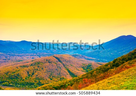 Mountain forest landscape