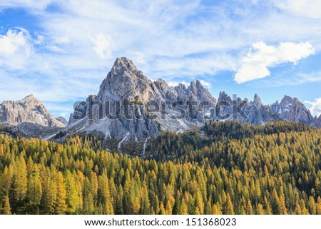 Mountain forest view in autumn