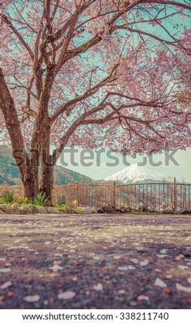 Mountain Fuji in spring ,Cherry blossom Sakura,vintage