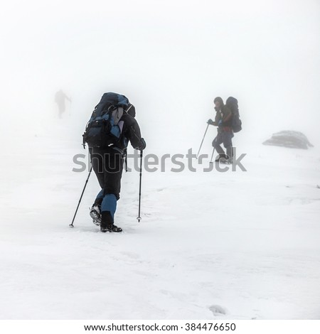 Mountain hiking group with backpacks and trekking poles having hard climbing trip in winter snow storm