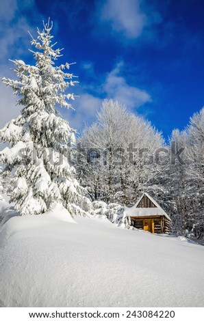 Mountain hut in winter landscape in woods covered with snow - stock photo