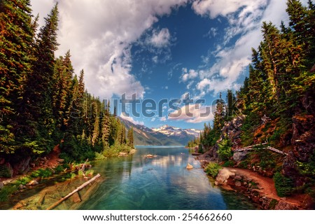 Mountain inlet flanked by tall evergreen trees