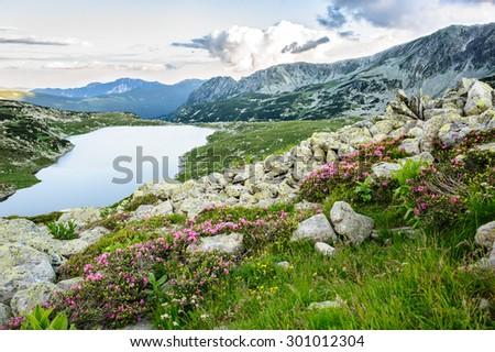 Mountain lake Bucura in Retezat National Park, Transylvania, Romania, Europe - stock photo