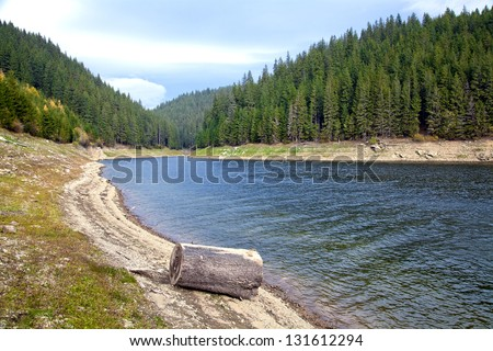 mountain lake with pine forest on the bank - stock photo