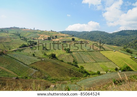 Mountain landscape and farm in Thailand