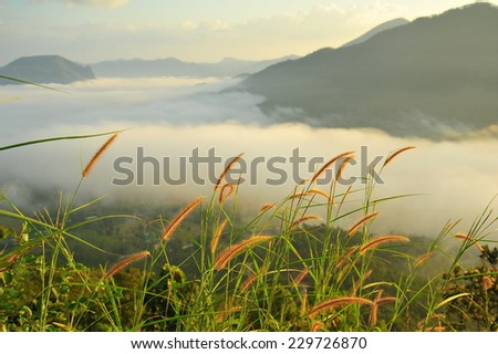 Mountain Landscape in the Mist at Sunrise  - stock photo