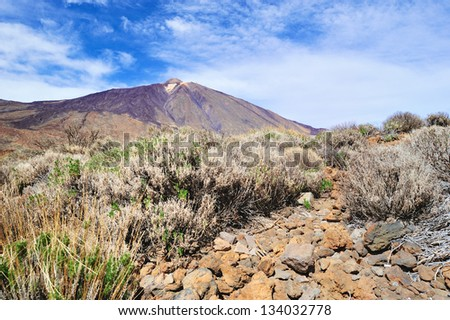 Mountain landscape of Teide National Park. Tenerife, Canary Islands
