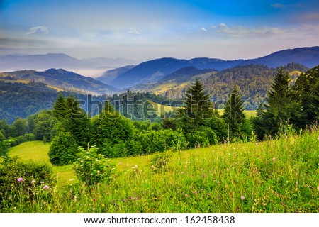 mountain landscape pine trees near valley and colorful forest on hillside under blue sky with clouds and fog - stock photo