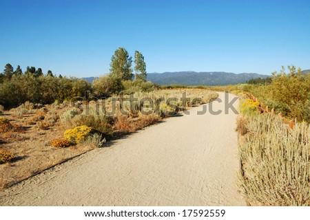 Mountain landscape; South Lake Tahoe, California - stock photo