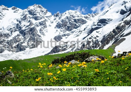Mountain landscape with flowers and blurred alpine peaks on the background