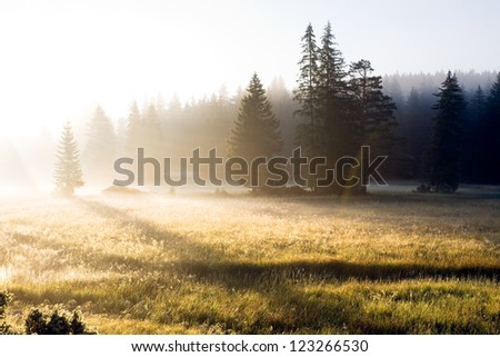 Mountain landscape with fog - stock photo