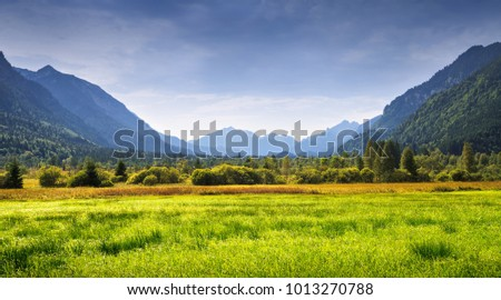 Mountain landscape with green valley in summer day