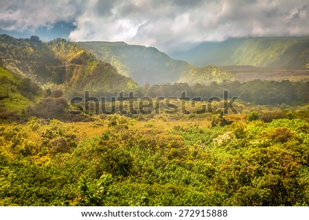 Mountain landscape with pacific ocean in the background, island Maui, Hawaii. Composition of natural background, bright green grass and blue sky with clouds - stock photo